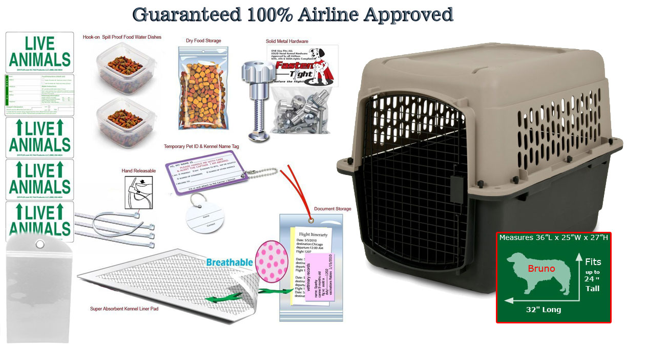 bruno all in one airline package.jpg