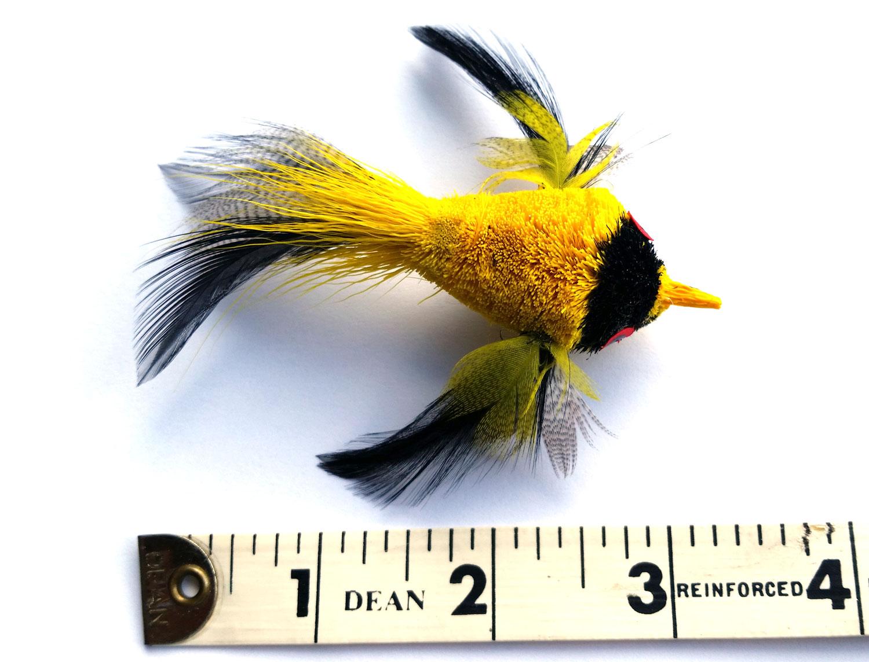 yellowbirdteaser.jpg